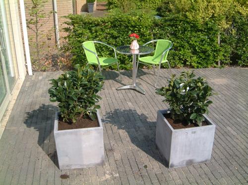 Apartment-Almere-02